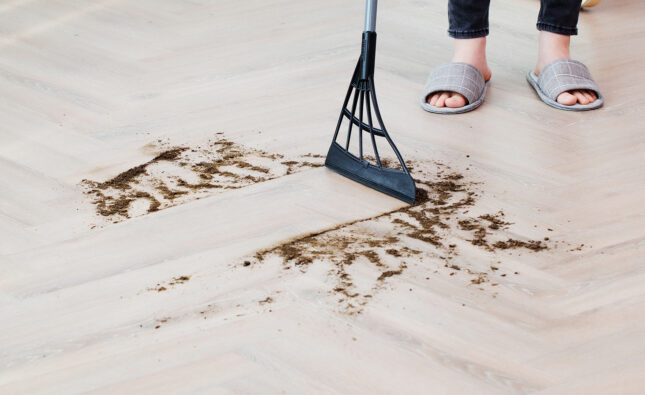 Can a broom be better than a vacuum cleaner?